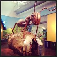 Photo taken at Kid Zoo U by Jason C. on 8/12/2013