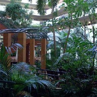 Photo taken at Embassy Suites by Hilton Tampa USF Near Busch Gardens by Jamison M. on 9/9/2013