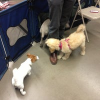 Photo taken at Unleashed by Petco by Michelle C. on 4/9/2013