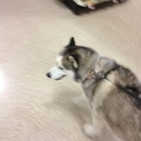 Photo taken at PetSmart by David B. on 7/27/2013