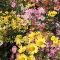 10/28/2014에 Mami S.님이 Conservatory Garden에서 찍은 사진