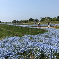 Foto diambil di Uminonakamichi Seaside Park oleh はるふ(ha1f) pada 4/30/2018