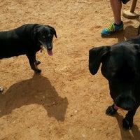 Photo taken at Oakton Dog Park by Hef on 3/22/2014
