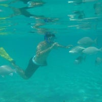Photo taken at Snorkeling by Scott D. on 5/20/2013