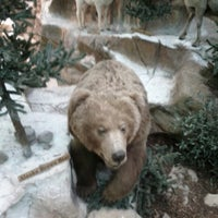 Photo taken at Cabela's by Jonathan G. on 1/21/2013