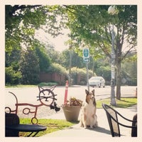 Photo taken at NoDa Historic Arts District by mtb m. on 8/5/2013