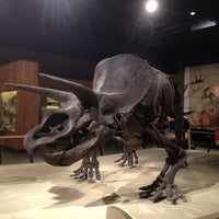 Photo taken at Cleveland Museum of Natural History by Shellie A. on 1/21/2013