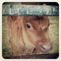 Photo taken at Cherry Grove Farm by Jeremy J. on 11/4/2013