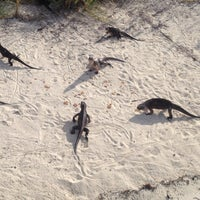 Photo taken at Little Halls Pond Cay by Stephen M. on 9/14/2013