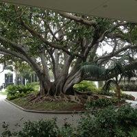 Foto tirada no(a) Fairmont Miramar Hotel & Bungalows por Sandra E. em 3/27/2013