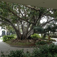 Photo taken at Fairmont Miramar Hotel & Bungalows by Sandra E. on 3/27/2013
