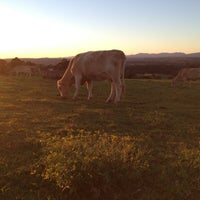Photo taken at Cow Paddock by Mandy L. on 5/18/2013