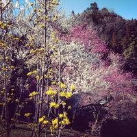 Photo taken at Kotobuki by Yuzo I. on 3/21/2014