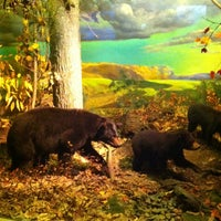 Photo taken at State Museum of Pennsylvania by Lucy C. on 5/25/2013