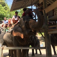 Photo taken at Safari Elephant by Даша С. on 1/14/2018