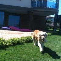 รูปภาพถ่ายที่ Çınar Boutique Hotel โดย TC Yesim D. เมื่อ 6/19/2013