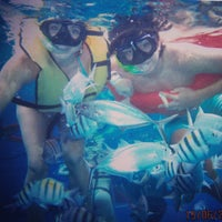 Photo taken at Cozumel Tours by Randall C. on 6/15/2013