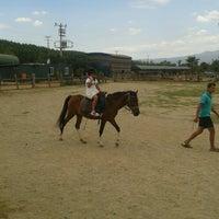 7/1/2013 tarihinde Merveziyaretçi tarafından Laren Safari Park'de çekilen fotoğraf