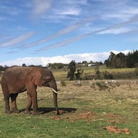 Photo taken at knysna elephant sanctuary by Noor on 8/12/2017