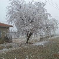 Photo taken at Okçu köyü by Y. O. on 4/6/2014