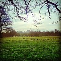 Снимок сделан в Wollaton Hall & Deer Park пользователем Chris R. 1/12/2013
