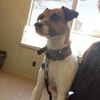 Photo taken at Jefferson Animal Hospital by Glenda N. on 1/15/2014