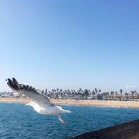 Photo taken at Newport Beach, CA by Hessa .. on 8/12/2017