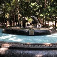 Foto tomada en Centro Histórico de Coyoacán por Alejandra C. el 4/27/2018
