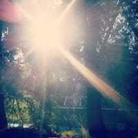 Снимок сделан в Дендрологический парк пользователем Женя Д. 7/7/2014