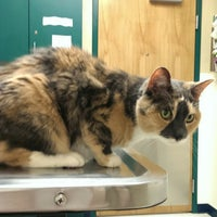 Photo taken at Valley Central Veterinary Emergency Hospital by Lori S. on 7/21/2014