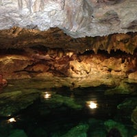 Das Foto wurde bei Cenote San Ignacio von Coco N. am 7/12/2013 aufgenommen
