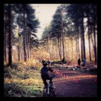 Снимок сделан в Clumber Park пользователем Rhys A. 12/16/2012