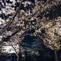 Photo taken at 藤田邸跡公園 by neko1go on 3/28/2018