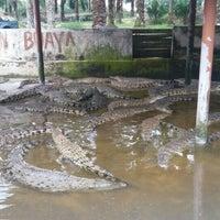 Photo taken at Taman Buaya (Crocodile World) by Iman N. on 12/24/2015