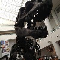 Снимок сделан в San Diego Natural History Museum пользователем Courtney M. 6/15/2013