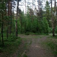Photo taken at Сертоловский лес by Daryana G. on 6/1/2013