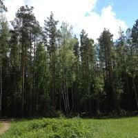Photo taken at Сертоловский лес by Daryana G. on 5/27/2013
