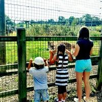 Photo taken at Noah's Ark Zoo Farm by Kara M. on 8/20/2013