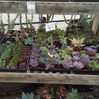 ... Photo Taken At Green Gardens Nursery By Haley H. On 4/4/2014 ...