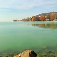Photo taken at Kis-Balaton by ⚓️Evgeny S. on 12/4/2013