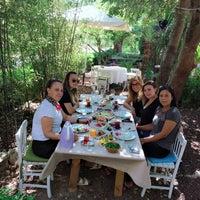 9/16/2018 tarihinde Elifziyaretçi tarafından Tarla Alacatı'de çekilen fotoğraf