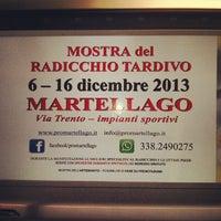 Photo taken at Martellago by Francesco D. on 12/4/2013