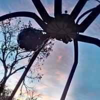 Photo taken at Mueller Spider Sculpture by JUAN C. on 12/3/2013