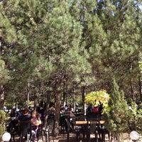 Photo taken at Çatı Cafe by yeginli on 10/7/2012