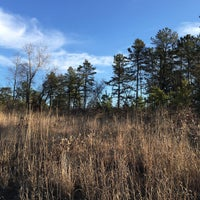 Photo taken at Albany Pine Bush Preserve Commission by Kenny T. on 1/30/2016