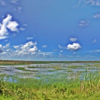 Photo taken at Everglades Private Airboat Tours by Angie V. on 7/6/2013