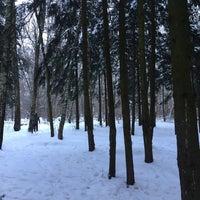 Foto tomada en Ульяновский лесопарк por Дарья М. el 1/29/2015