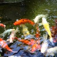 Photo taken at Tokyo Garden by R L. on 6/16/2014