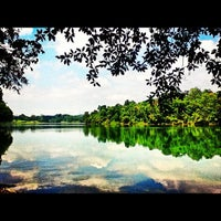 Photo taken at MacRitchie Reservoir Park by Hydn E. on 11/20/2012