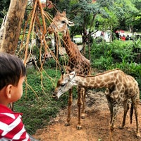 Photo taken at Dusit Zoo by Stanislav N. on 2/3/2013